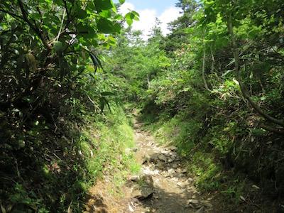 早池峰山12