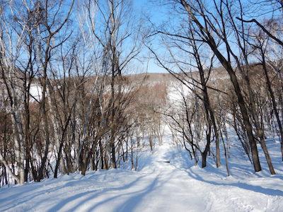 15 水上高原藤原スキー場