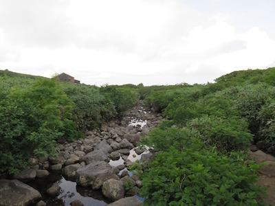 鳥海山34