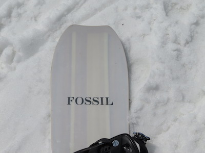 1FOSSIL ALL MOUNTAUN Ⅱ
