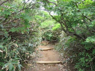 20 百名山那須岳