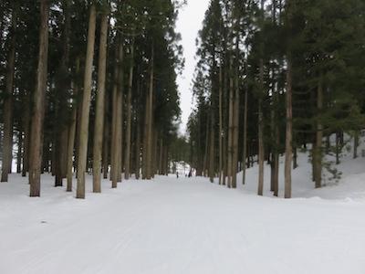 神立高原スキー場13