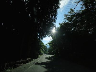 IMG_6472