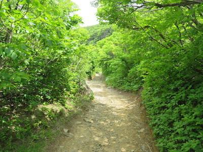 25安達太良山
