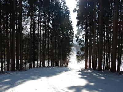 27 水上高原藤原スキー場